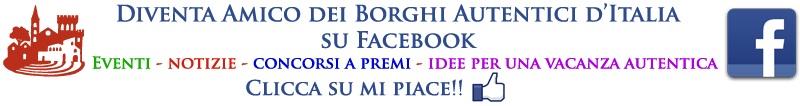 facebook_orizzontale_BAI