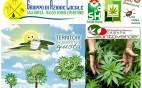 canapa_convegno-crop
