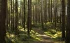 spesa-ambientale-regioni