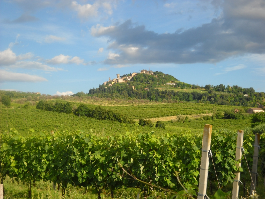 Bertinoro panorama