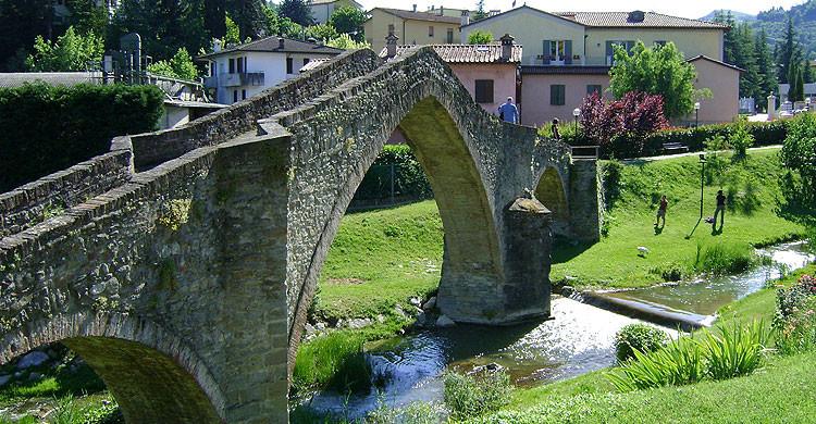Modigliana Ponte della Signora