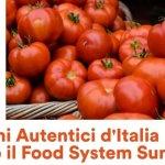 Food-System-Summit