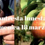 Montresta-Innesta