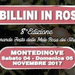 Sibillini-in-rosa-montedinove