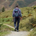camminare, Via Francigena Collective Project 2016 - Presentazione