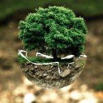 collegato ambientale alla legge di stabilità