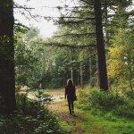 turismo a zero emissioni, camminare, turismo rispettoso della natura e del paesaggio