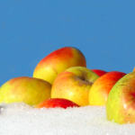 montedinove mela rosa Sibillini in Rosa borghi autentici d'italia