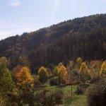 pietralunga colline autunno