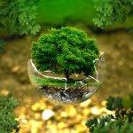 Protezione-ambientale