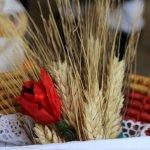 sardara sagra del grano