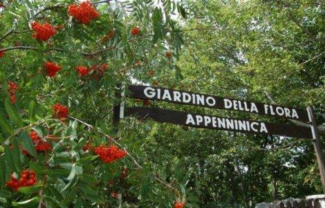 55-anni-Giardino-della-Flora-Appenninica-Capracotta