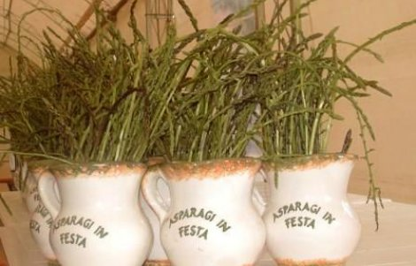 asparagi-in-festa-san-vincenzo-valle-roveto