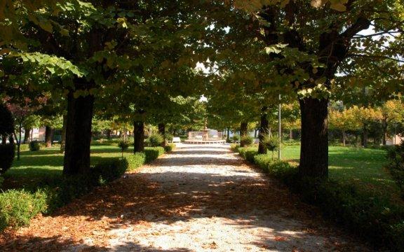 Carassai-giardini-pubblici