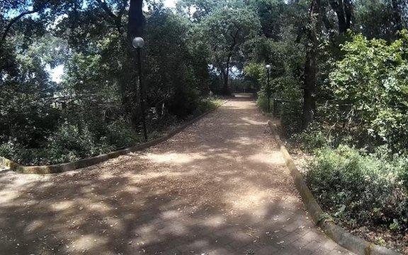 Collepasso-Parco-Bosco