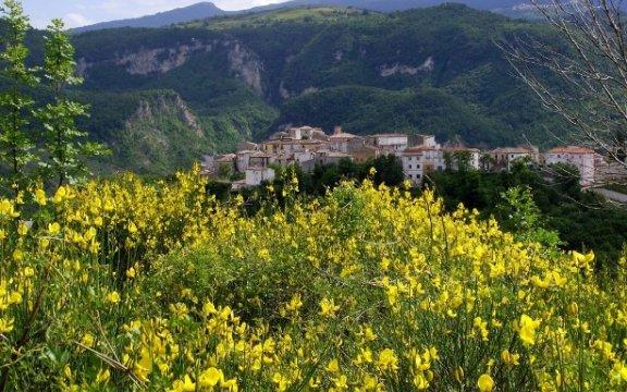 Fallo-panorama del borgo con ginestre