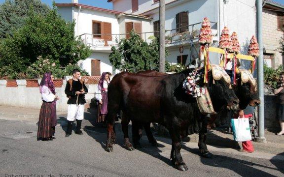 Scano_di_Montiferro_processione__Foto_Tore_Piras