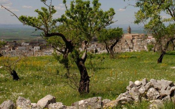 Minervino-Murge-panorama