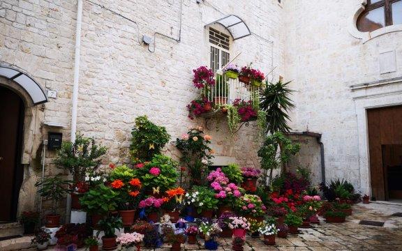 """""""Il Balcone fiorito nel Borgo Antico"""": 19ª edizione a Casamassima (Ba)"""