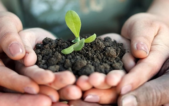 coltiviamo_agricoltura_sociale