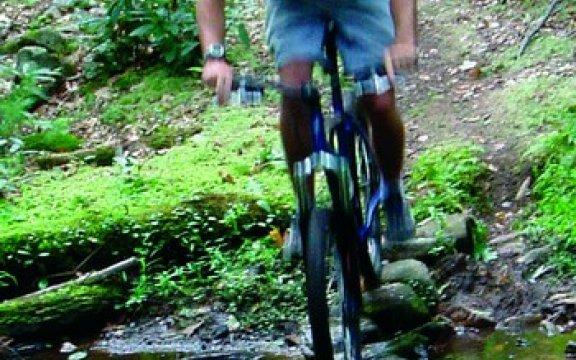 Lauco_Bike