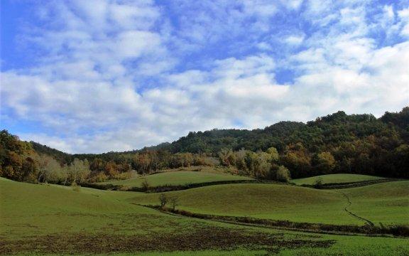 Montesegale-Città-libere-dai-pesticidi-Borghi-Autentici-Italia