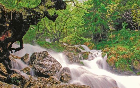 Morino-torrente-lo-schioppo-aree-protette