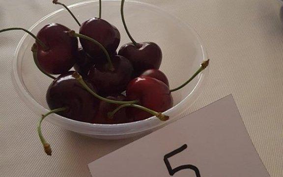 La ciliegia di Roseto Capo Spulico (Cs)è la più bella d'Italia