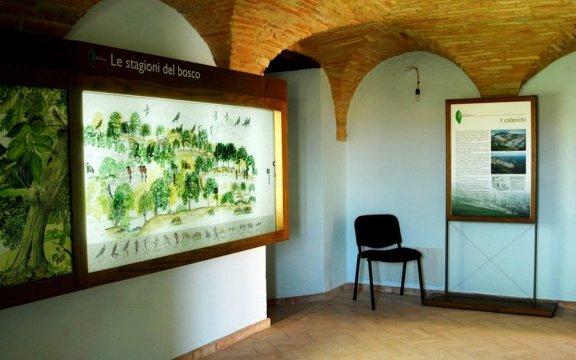 Rotella-Museo-naturalistico