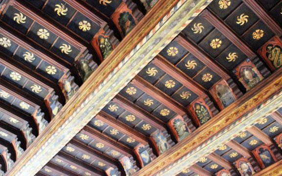 Saluzzo-Casa-Cavassa-soffitto-cassettoni