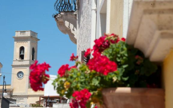 Salve dettaglio fiore campanile