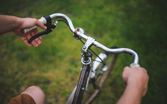 sardara pedalata ecologica