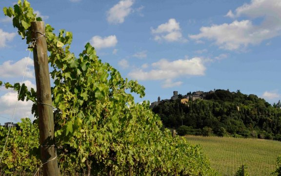 comunità ospitale di bertinoro, un weekend dedicato a vini e sapori