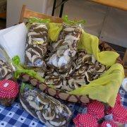 festa nazionale borghi autentici 2010 levice stand con prodotti tipici locali funghi