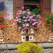 festa nazionale borghi autentici 2008 sauris dettaglio del borgo legno fiori